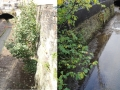 River Calder before&after - pool riffle.jpg